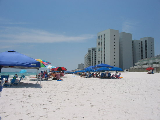 เดสติน, ฟลอริด้า: Beach in Destin. Cleanest, prettiest beach I ever saw!