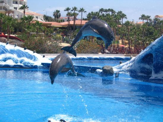 Aqua Golf Hotel Tenerife