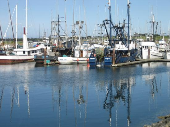 Curly Redwood Lodge: Crescent City Harbor - a 5 minute walk from the Lodge