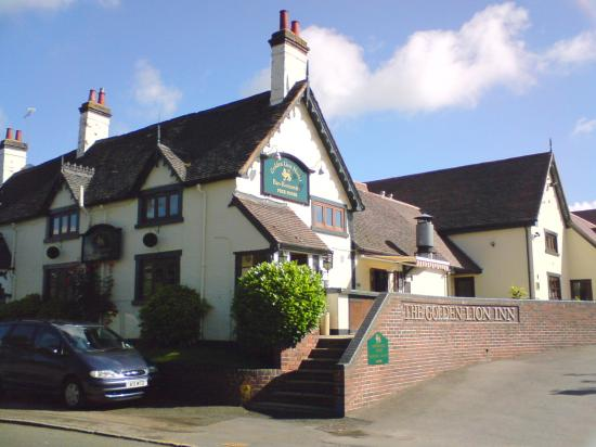Golden Lion Hotel & Inn: The view from the road
