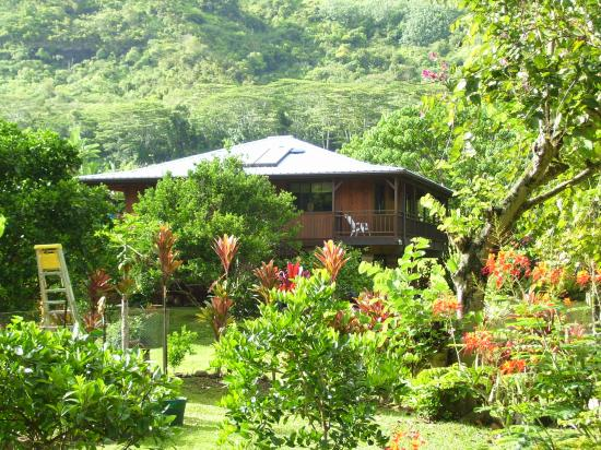 Makaleha Mountain Retreat: Our Honeymoon House