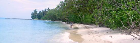 Minang Cove Resort: secluded beaches