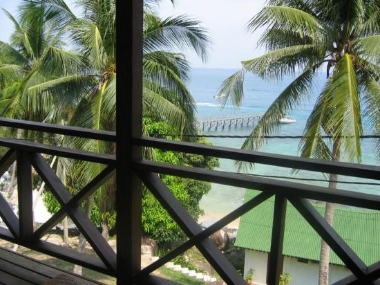 Minang Cove Resort: Private Balcony View (occasional monkey crossings on the wires!)