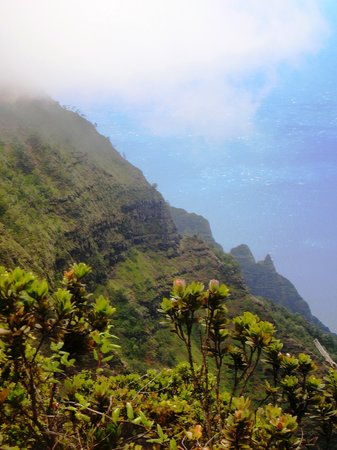 Kauai, HI: fog rolling in on the ridge hike