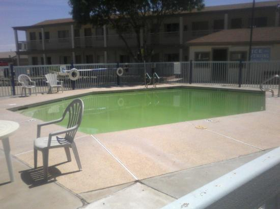 All Inn: unappetizing green pool
