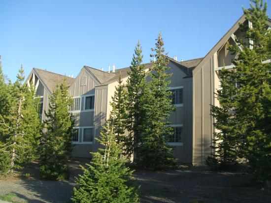 Grant Village Lodge: Our Hotel