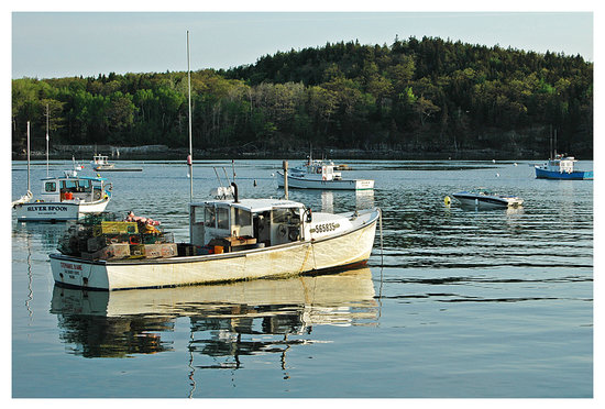 Bar Harbor, ME: lobster boat