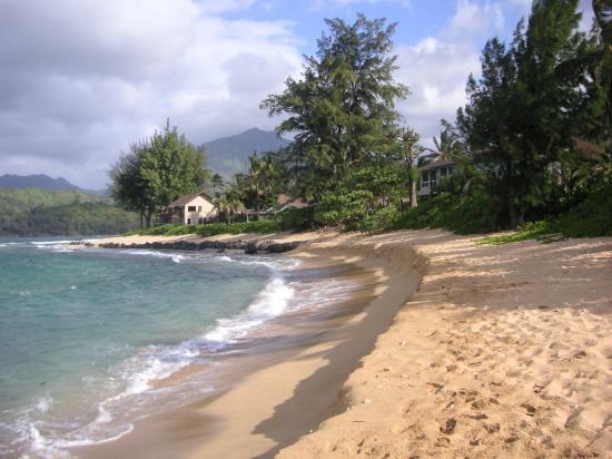 ... at the beach - Picture of Hanalei Colony Resort, Hanalei - TripAdvisor