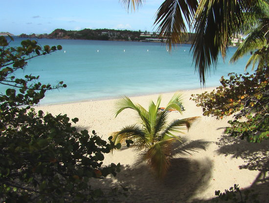 USA Jungfruöarna: Emerald Beach, St. Thomas