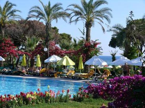 Papillon Ayscha: Vue de l'hotel vers la mer