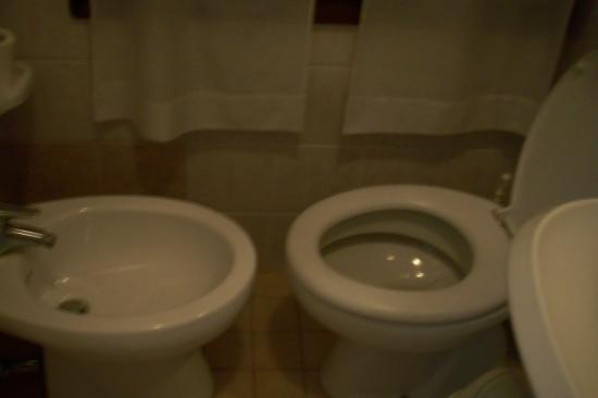 Trieste Hotel: Hard to sit on the toilet