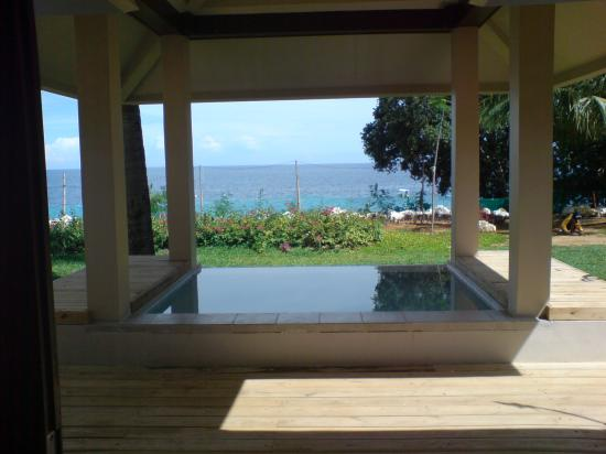 Amorita Resort: ocean villa view