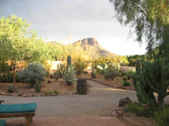 White Stallion Ranch: view from our casita