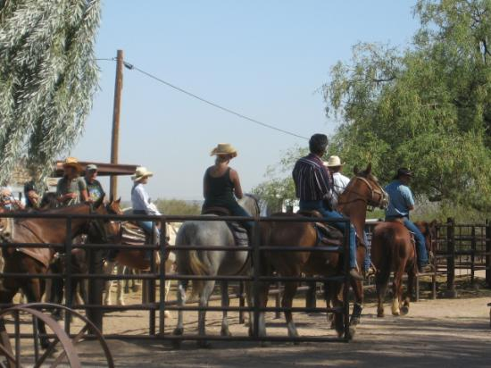 White Stallion Ranch: heading out on a fast ride