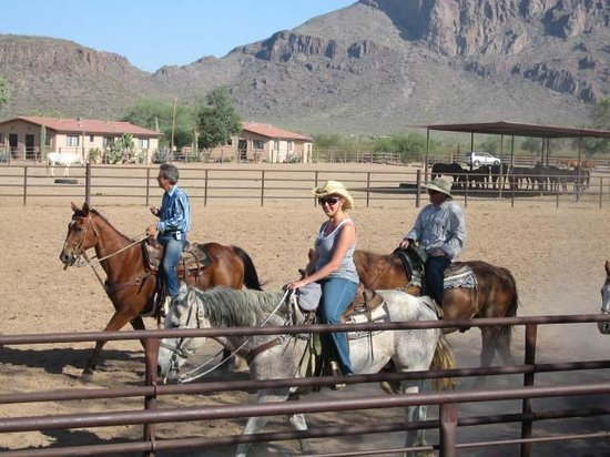 White Stallion Ranch: team penning on Winchester