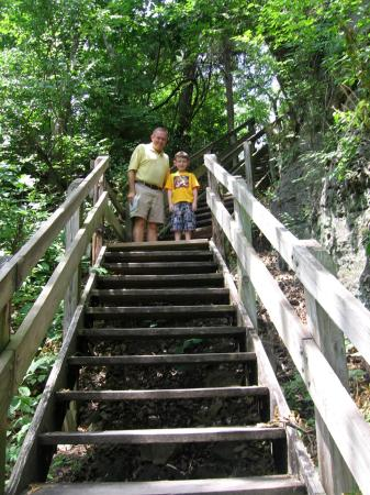 Mastodon State Historic Site: Bone trail steps.