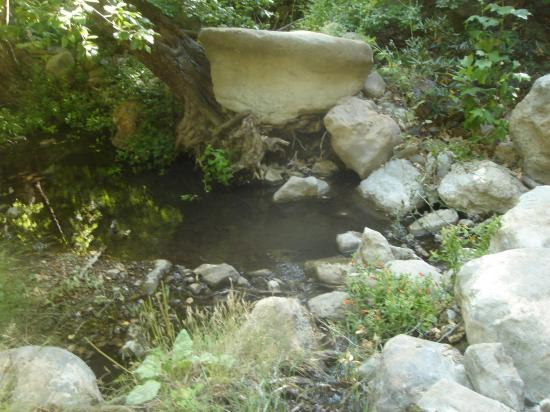 Solstice Canyon: brook