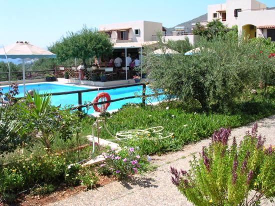 Elounda Heights: The pool area