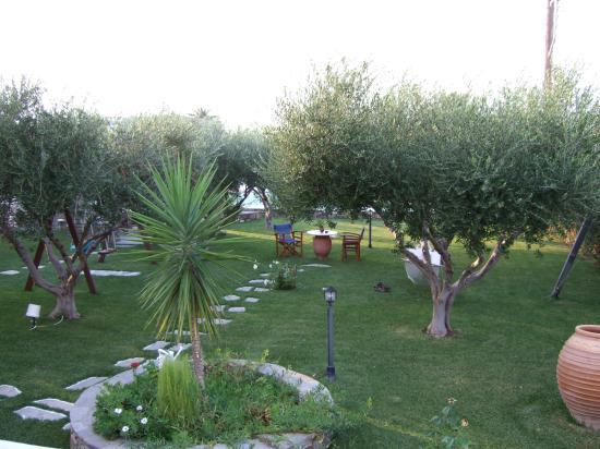Pension Sofia: le jardin