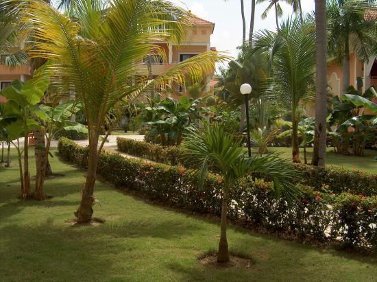 Grand Bahia Principe Bavaro: vue de notre chambre