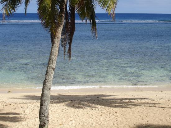 Rarotonga Backpackers 사진