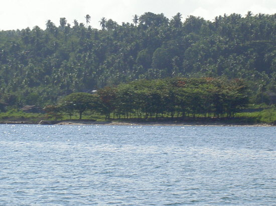 Davao City, Filipinler: going to samal