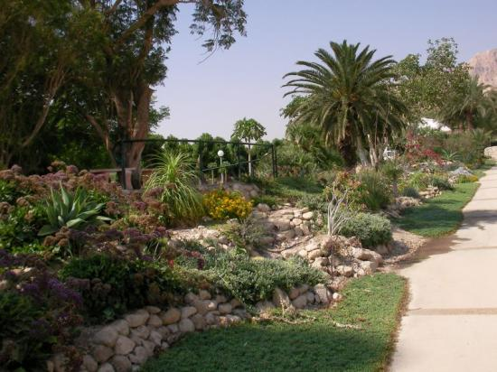 Photo of Kibbutz Ein Gedi