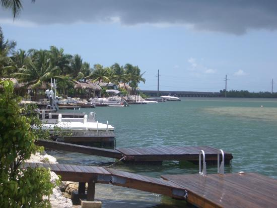 Lot 65 Looking North Picture Of Bluewater Key Rv Resort