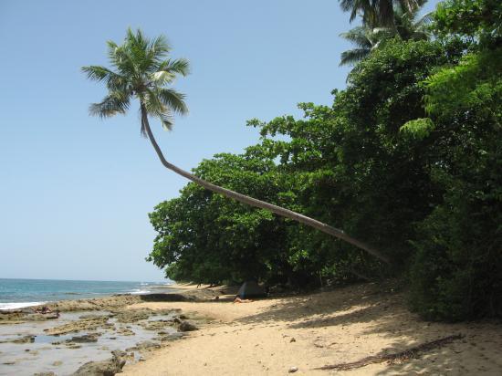 Blue Boy Inn: steps beach nearby