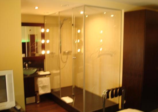 Fleming's Hotel Zuerich: Sink/Shower