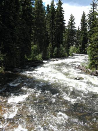 Sonnenalp: Creek by hotel