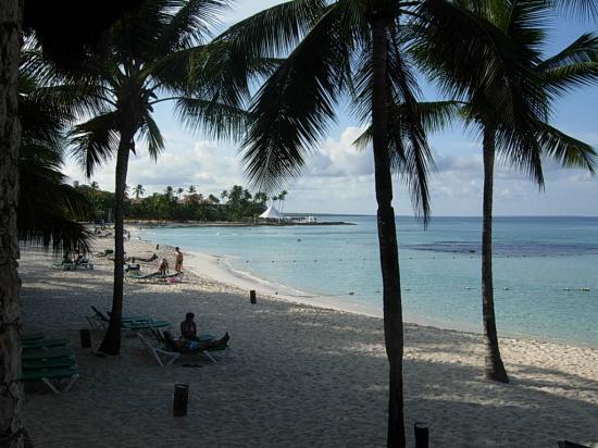 Viva Wyndham Dominicus Beach: la playa