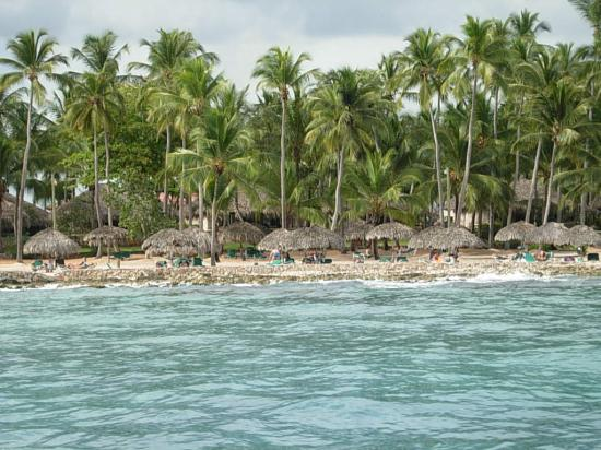 Viva Wyndham Dominicus Beach: La playa del hotel