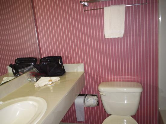 The Country Inn at the Mall: Bathroom