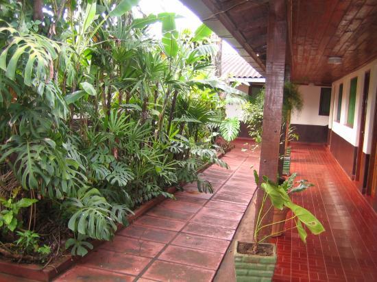 Los Helechos: jardin entre habitaciones