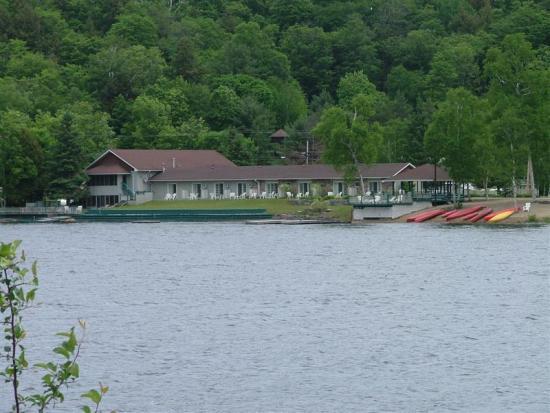 loons on lake outside hotel room picture of algonquin. Black Bedroom Furniture Sets. Home Design Ideas
