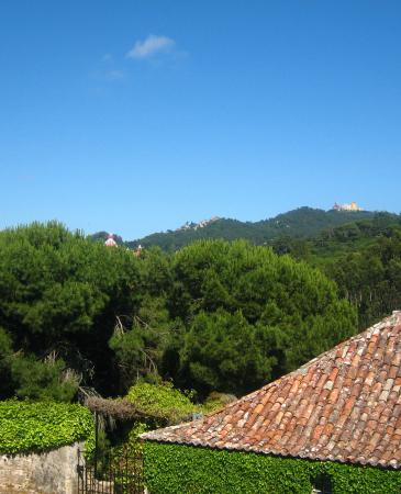 Quinta da Capela : View from Room