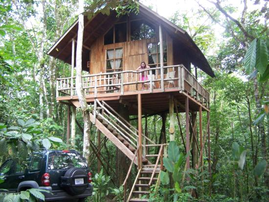 Our treehouse in the jungle picture of tree houses for Jungle house costa rica