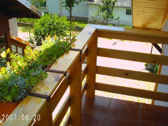 Pensiunea Marina: View from the balcony