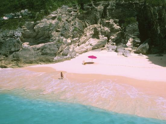 Hamilton, Bermuda: Pink Sand Beach from our Heli tour