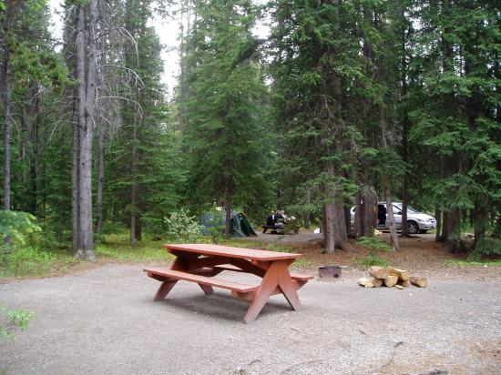 Waterfowl Lake Campground: View from the road.