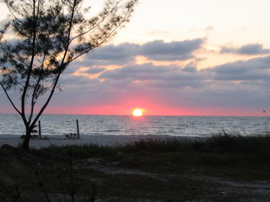 Anna Maria Island Beach Resort: Sunset from the resort
