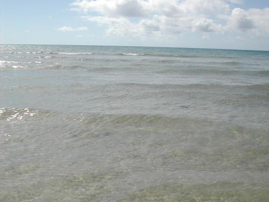 Sotavento Beach Club : Blick aufs Meer (mit richtig klarem, angenehm warmen Wasser)