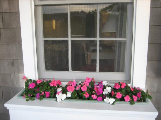 The Beachside: Lovely Flower Beds at Every Room