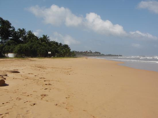 Bentota Beach by Cinnamon: The beach right outside the hotel