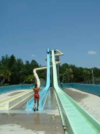 La Quinta Inn & Suites Valdosta / Moody AFB: water slides at Wild Adventures Water Island