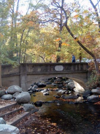 ลิเธียปาร์ค: Lithia Park - Ashland Creek