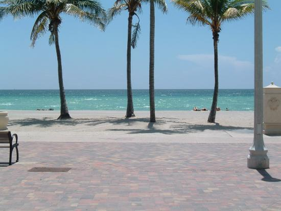 Hollywood Beach Marriott: Looking out into the ocean