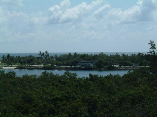 Hollywood, FL: View from the observation tower