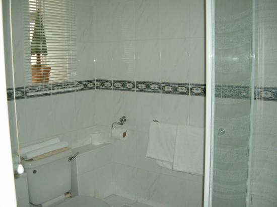 The Mytton and Mermaid Hotel: Shower room